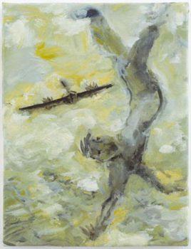 2008, Aus einem Flugzeug springen, Jumping from an Airplane