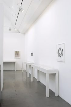 "Exhibition ""The Art of Watching Birds"", Galerie Barbara Thumm Berlin, 26 February – 21 April 2011"
